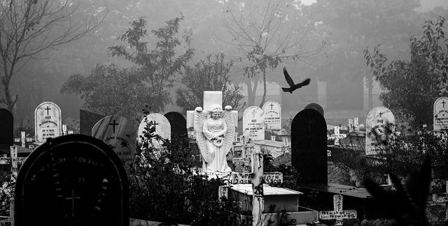 mlha na hřbitově